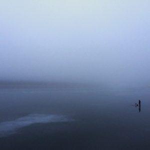 Рыбак в тумане. Автор - Лазарев Андрей
